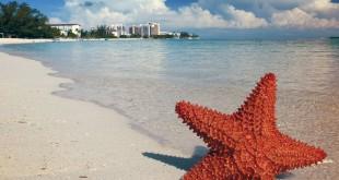 Russie Bahamas paradis fiscaux
